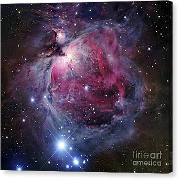 Cosmic Space Canvas Print - The Orion Nebula by Robert Gendler
