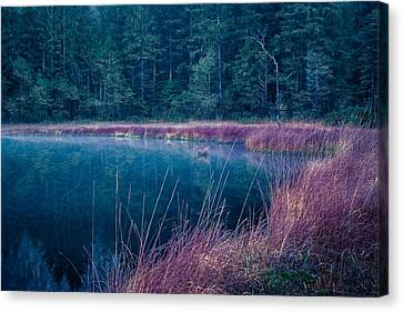 The Other Side Canvas Print by Alexander Kunz