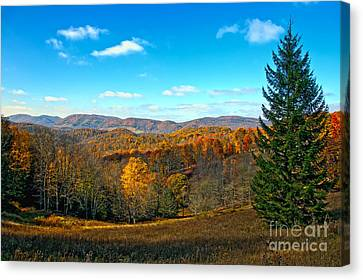 The Other Side Of The Road In Wv Canvas Print by Kathleen K Parker