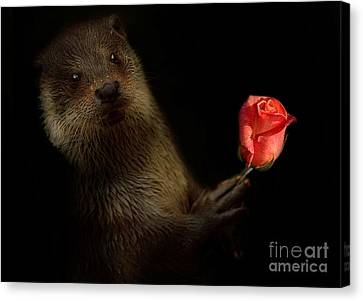 Canvas Print featuring the photograph The Otter by Christine Sponchia