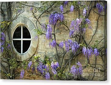 The Oval Window Canvas Print