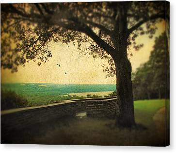 The Overlook Canvas Print by Jessica Jenney