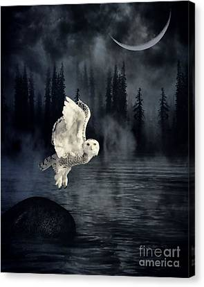 The Owl And Her Mystical Moon Canvas Print by Heather King