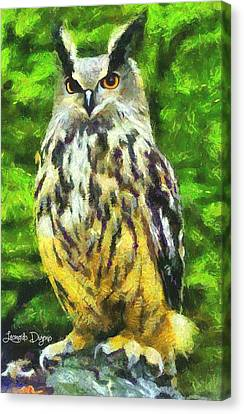 The Owl Canvas Print by Leonardo Digenio