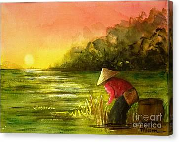 The Paddy Field Canvas Print by Therese Alcorn