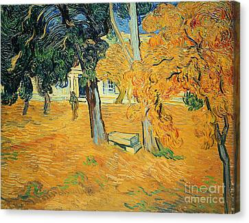 The Park At Saint Pauls Hospital Saint Remy Canvas Print by Vincent van Gogh