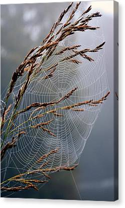 Seed Beads Canvas Print - The Parlour by Jon Rushton