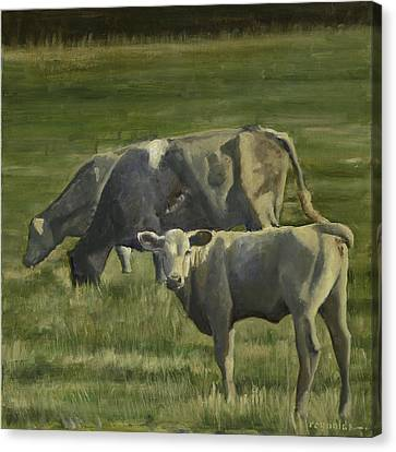 The Pasture Canvas Print by John Reynolds