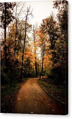The Path Canvas Print by Annette Berglund