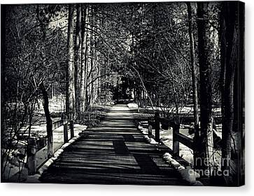 The Path Canvas Print by Elizabeth Babler