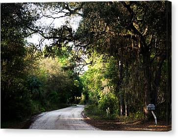 Jogging Canvas Print - The Path Home by Parker Cunningham