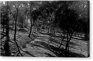 The Path In Abstract Canvas Print