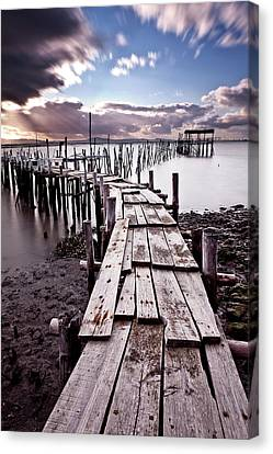 Canvas Print featuring the photograph The Path by Jorge Maia