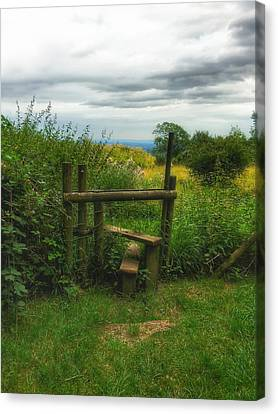 Canvas Print featuring the photograph The Path Most Traveled  by Connie Handscomb