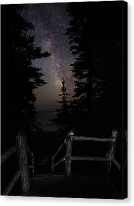 The Path Of The Hunter Canvas Print by Brent L Ander