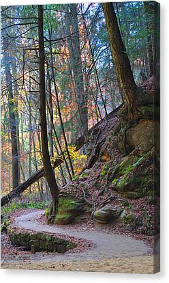 The Path Canvas Print by Peter  McIntosh