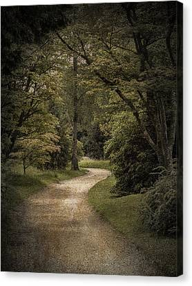 Canvas Print featuring the photograph The Path by Ryan Photography