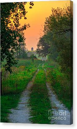 The Path We Follow Canvas Print by Andrew Slater