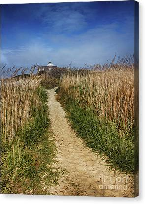 The Pathway Home Canvas Print by Tom Gari Gallery-Three-Photography