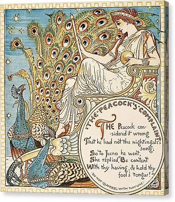 The Peacock's Complaint Canvas Print