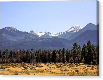 Spots Canvas Print - The Peaks - Where Earth Meets Heaven by Christine Till