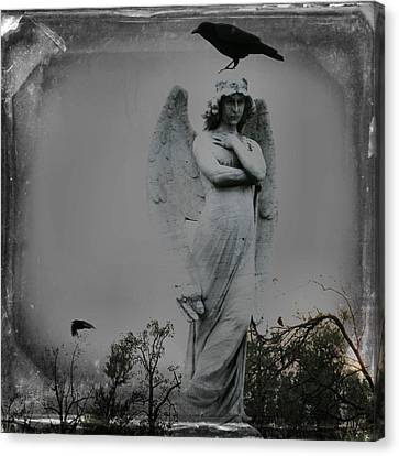 The Perch Of An Angel Canvas Print