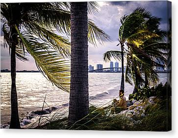 Flowers Miami Canvas Print - The Perfect Spot by Camille Lopez