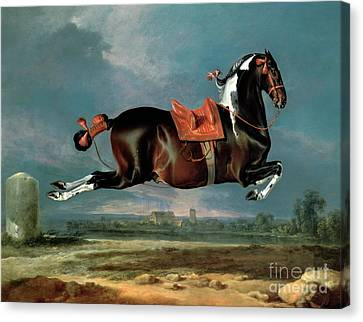 Jumping Horse Canvas Print - The Piebald Horse by Johann Georg Hamilton