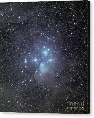 The Pleiades Surrounded By Dust Canvas Print by Phillip Jones