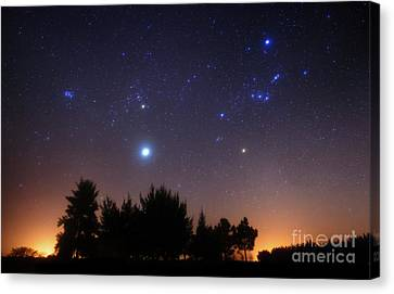 Starlight Canvas Print - The Pleiades, Taurus And Orion by Luis Argerich