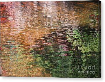 The Pond Canvas Print by Donna Greene