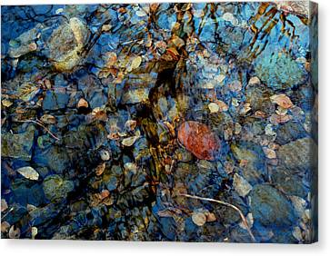 The Pond In Autumn Canvas Print