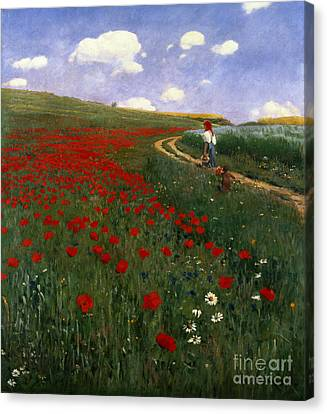 The Poppy Field Canvas Print by Pal Szinyei Merse