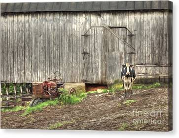 The Poser Canvas Print by Benanne Stiens