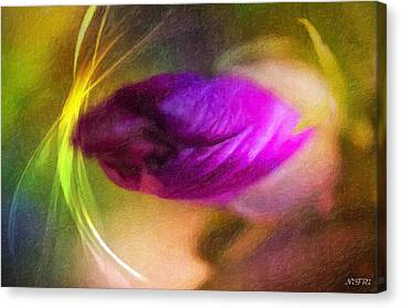 The Power Of Dreams Canvas Print by Nicole Frischlich