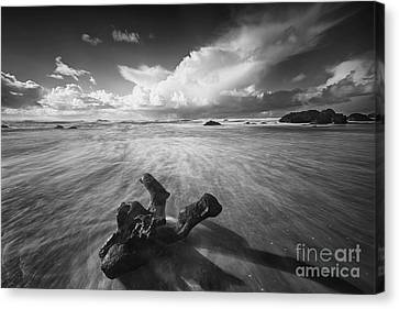 The Power Of Waves Canvas Print by Masako Metz