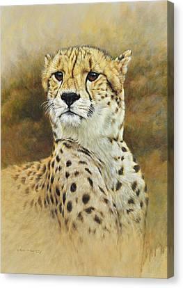 The Prince - Cheetah Canvas Print