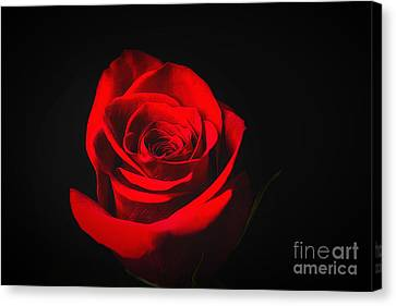The Promise Of Love Canvas Print