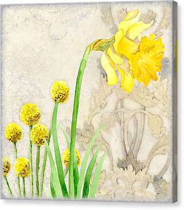 The Promise Of Spring - Daffodil Canvas Print by Audrey Jeanne Roberts