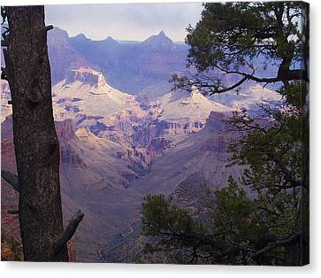 The Purple Grand Canvas Print by Marna Edwards Flavell