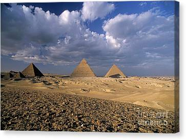 The Grand Place Canvas Print - The Pyramids At Giza by Sami Sarkis
