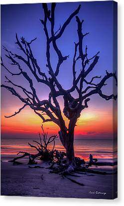 The Quiet Driftwood Beach Live Oaks Jekyll Island Georgia Canvas Print by Reid Callaway