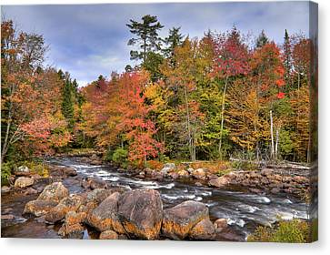 Canvas Print featuring the photograph The Rapids On The Moose River by David Patterson
