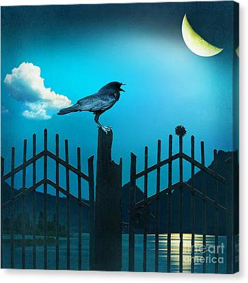 The Raven In The Night Canvas Print by Monika Juengling