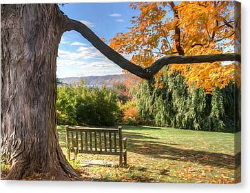 The Reading Bench Canvas Print by Zev Steinhardt
