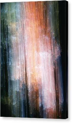 The Realm Of Light Canvas Print by Steven Huszar