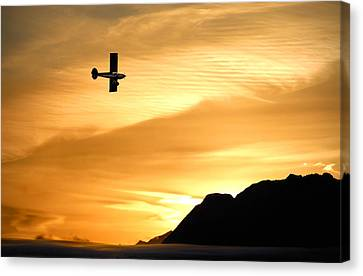 The Reason Canvas Print by Ron Day