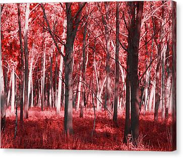 Red Leaf Canvas Print - The Red Forest by Dan Sproul