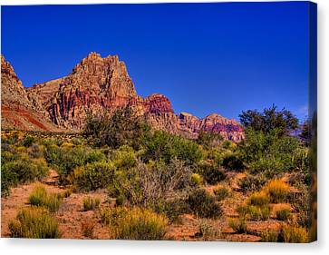 The Red Rock Canyon At Bonnie Springs Ranch Canvas Print by David Patterson