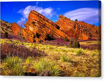 The Red Rock Park Vi Canvas Print by David Patterson